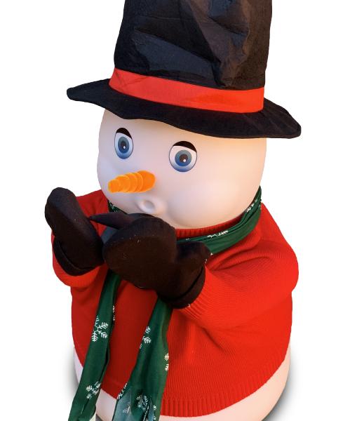 The Amazing Snowman